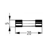 Zekeringen 5x20mm Snel & Traag