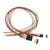 Print stekkerverbinding 2-polig 20cm kabel